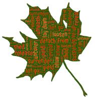 leaf-681828_640